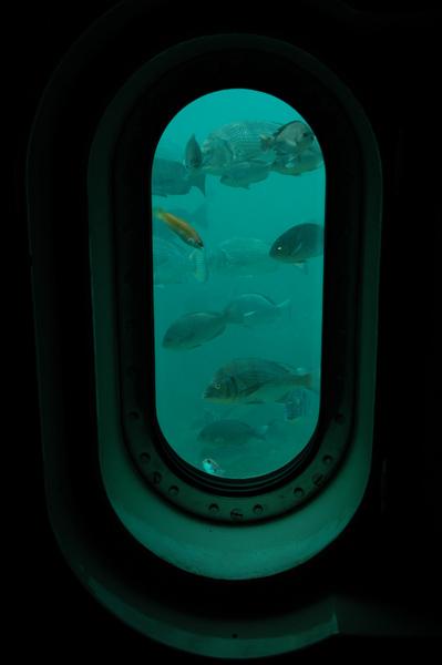 波戸岬 海中展望塔