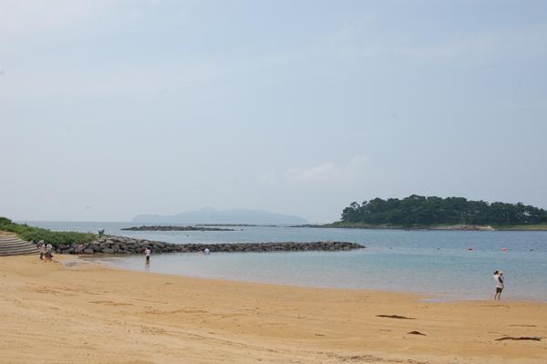 波戸岬 ビーチ